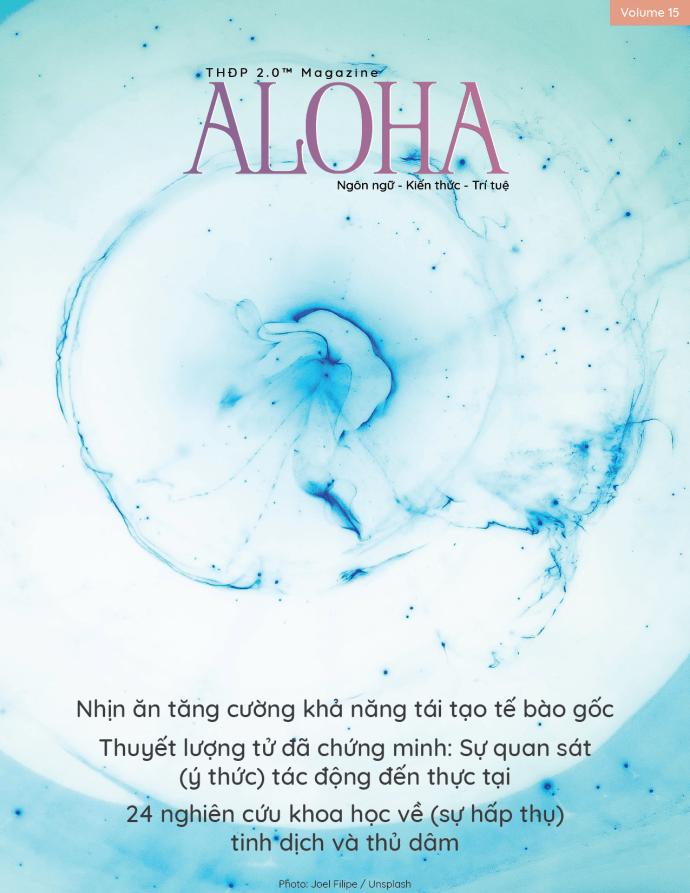 aloha 15 cv-01