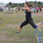 30 inch hurdle