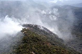 Fogo destrói área no ponto mais alto do Paraná