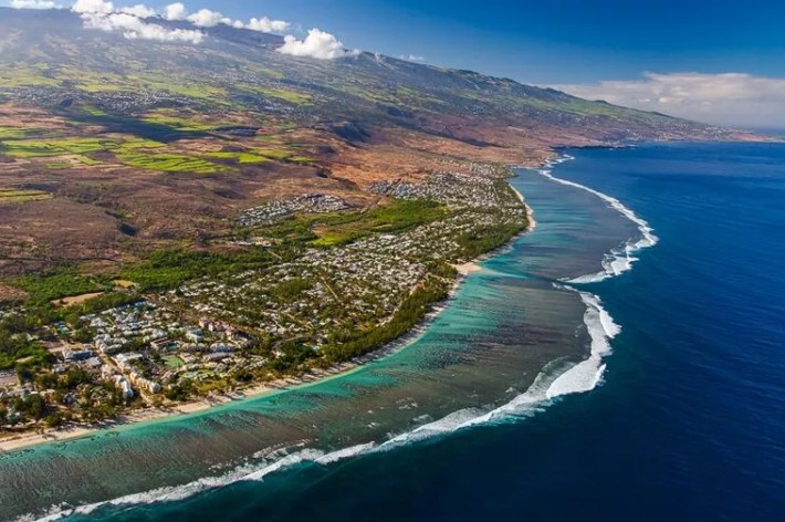 Lá Reunion