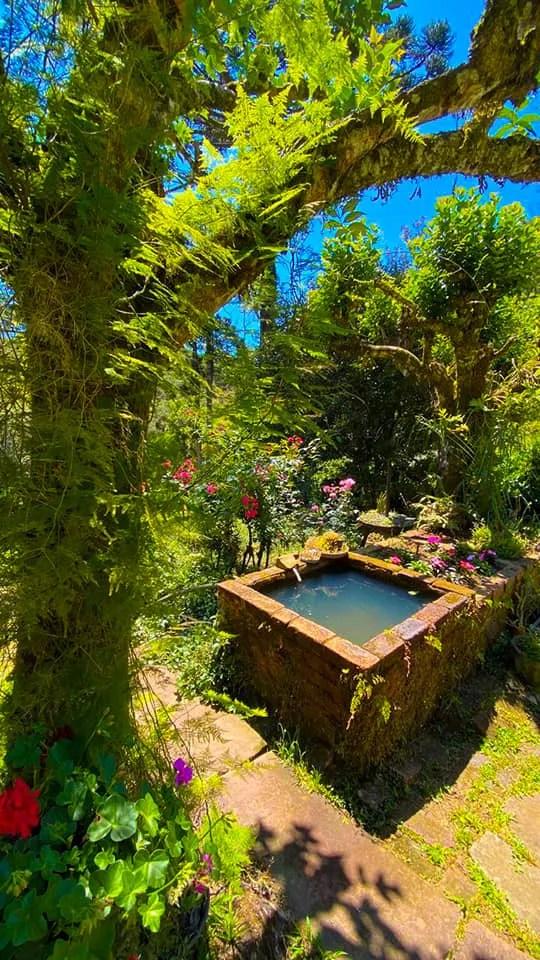 jardim farroupilha