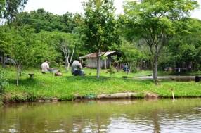 Pesqueiro Trevo em Farol