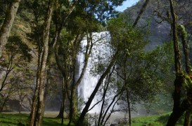 Salto Puxa Nervos em Tibagi