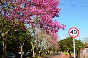 Avenida em Mamborê