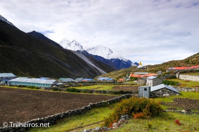 Dingboche - Trekking Campo Base Everest Trilheiros