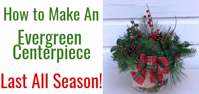 An Evergreen Christmas.How To Make An Evergreen Centerpiece Last All Season