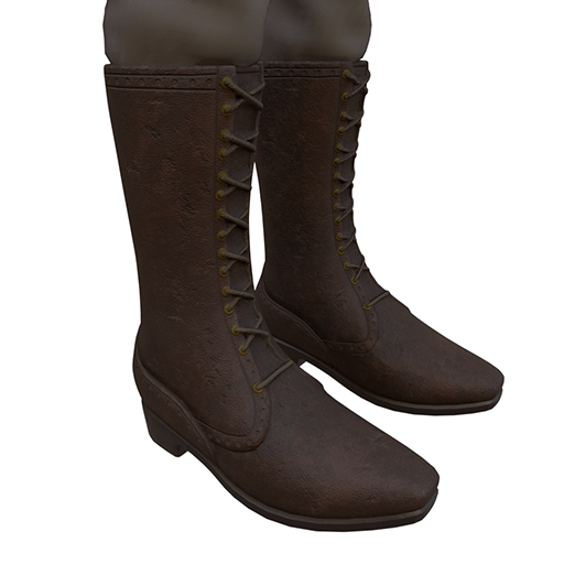 Boots in Tan