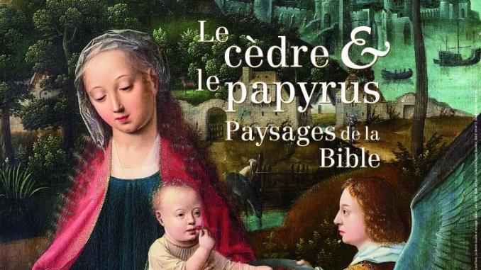 cèdres-papyrus-paysages-de-la-bible