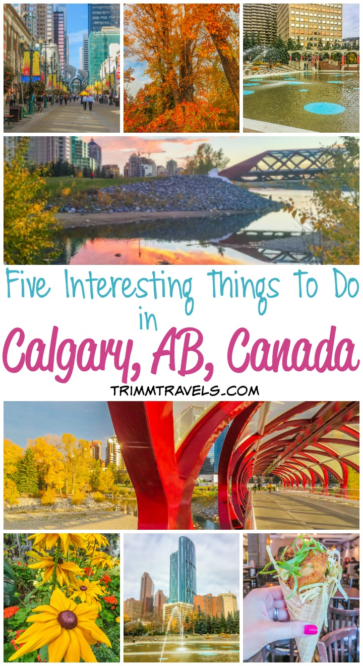 What To See Calgary Alberta Canada
