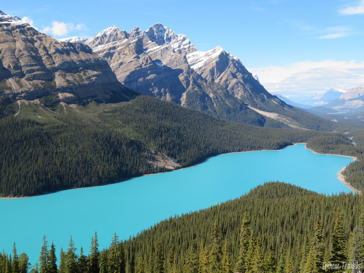 Canada Trimm Travels First Year Birthday Blogversary