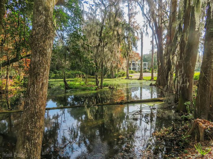 in gardens looking back at Magnolia Plantation Charleston