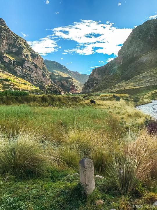 pasture with brook in cusco region peru