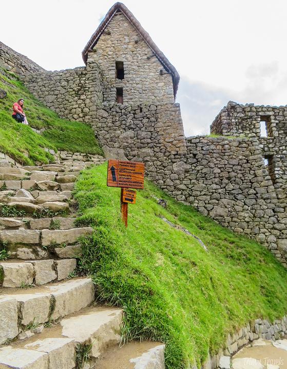 set of steps going up in machu picchu peru