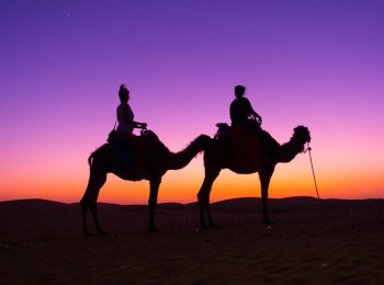 Best Morocco Luxury Desert Camp: Glamping the Sahara with Top Desert