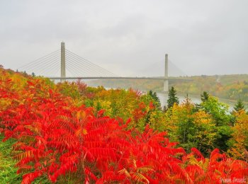 Maine in the Fall: Best Foliage Views + What to See and Do