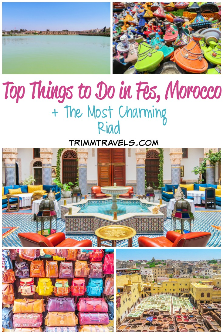 Heading to Morocco? Wondering what to do in Fes or where to stay? I got you covered! Check out these top things to do in fes and this charming riad! #fes #fez #morocco #maroc #africa #riad #hotels #hotel #accommodations #activities #attractions #travel #destinations #travelguide