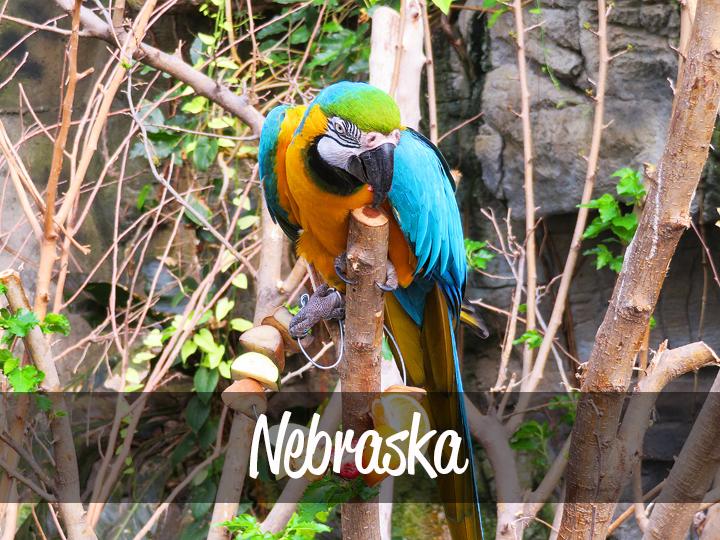Trimm Travels: Nebraska