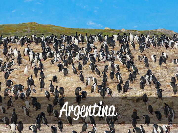 Trimm Travels: Argentina