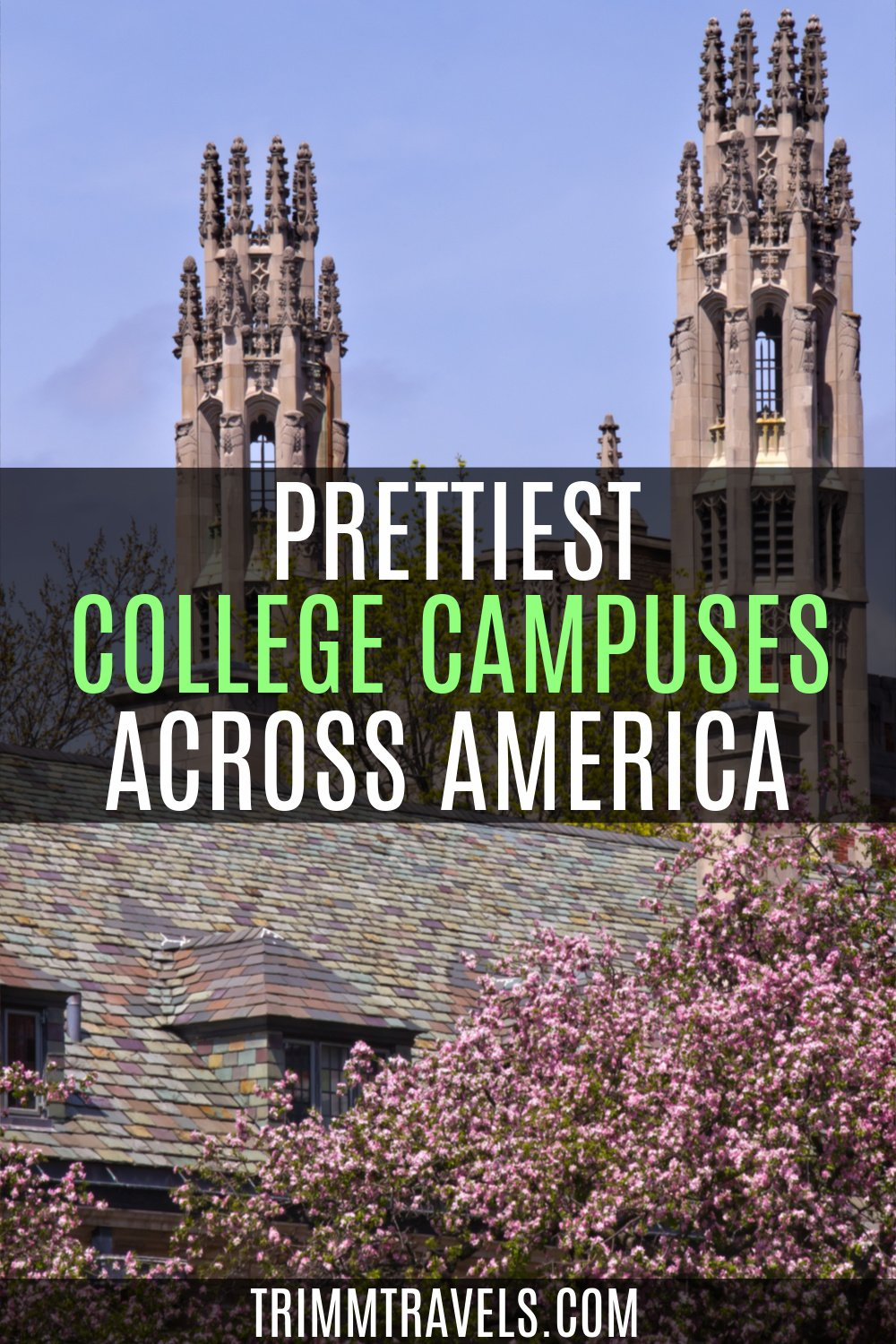 Pinterest graphic with title of post and pink flowers, gothic architecture building in background