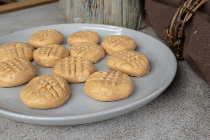 Keto No Bake Peanut Butter Bites