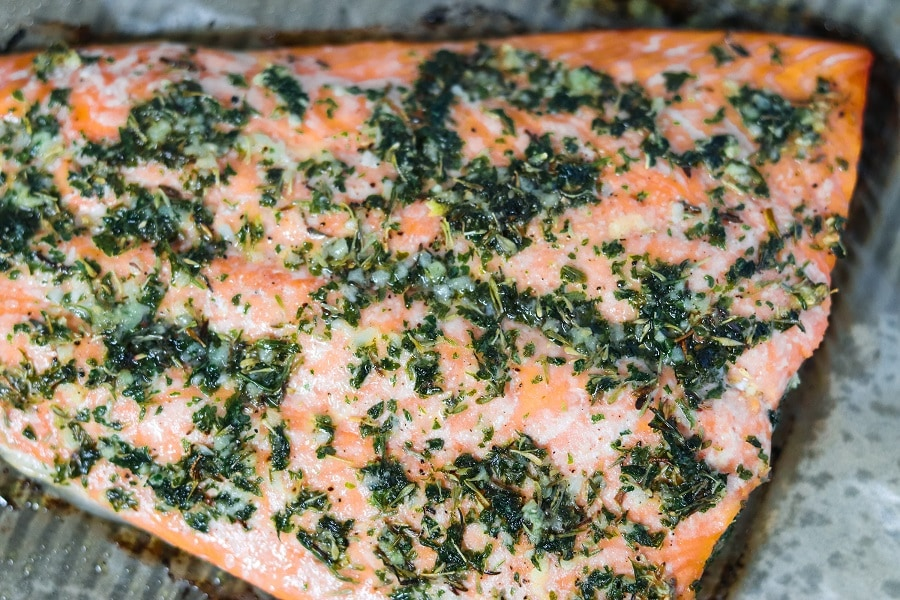 Lemon Rosemary Salmon close up