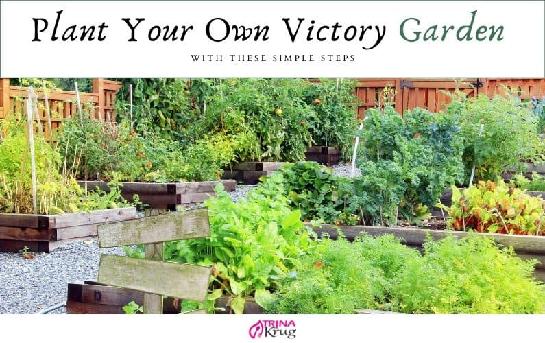 Plant A Victory Garden With These Simple Steps