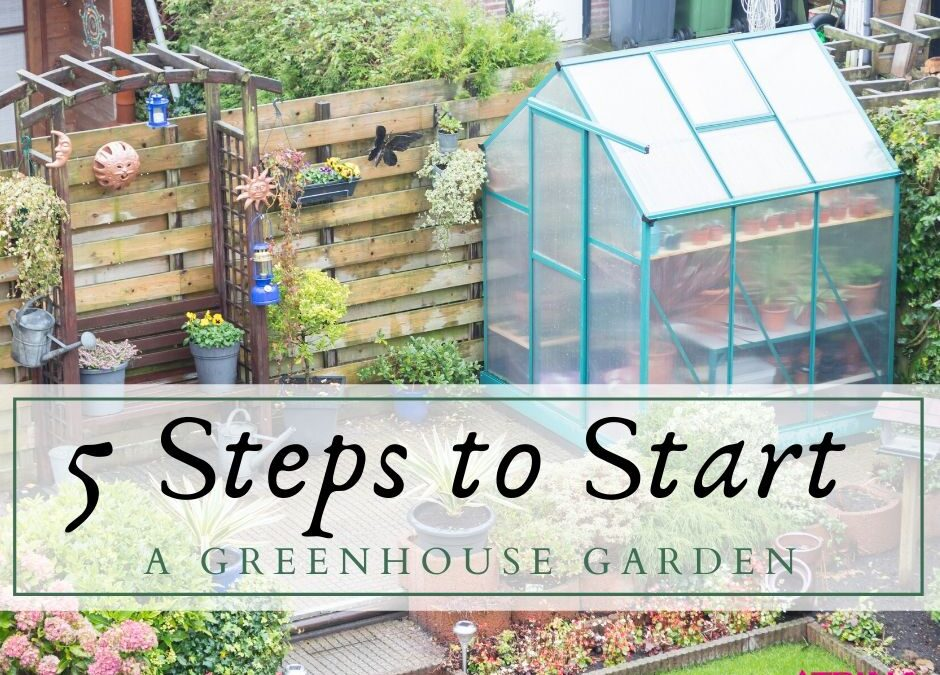 5 Steps to Start a Greenhouse Garden