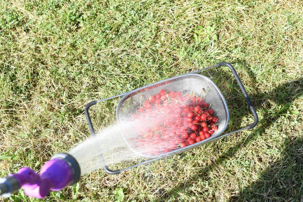 washing cherries