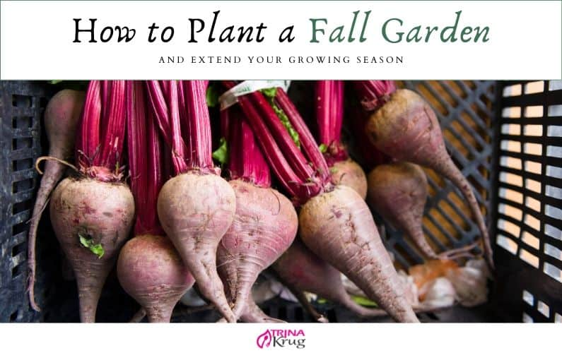 How to Plant a Fall Garden