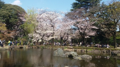 The lake at Yasukuni shrine, central Tokyo