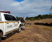 Ronda Alta – Mulher é encontrada morta em veículo abandonado