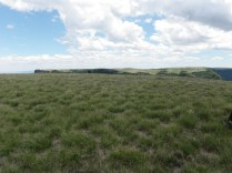 Flat Top of Fisher's Peak