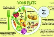 the food plate