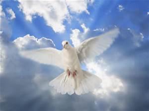 Caregiving Monday:  When Heaven Nears