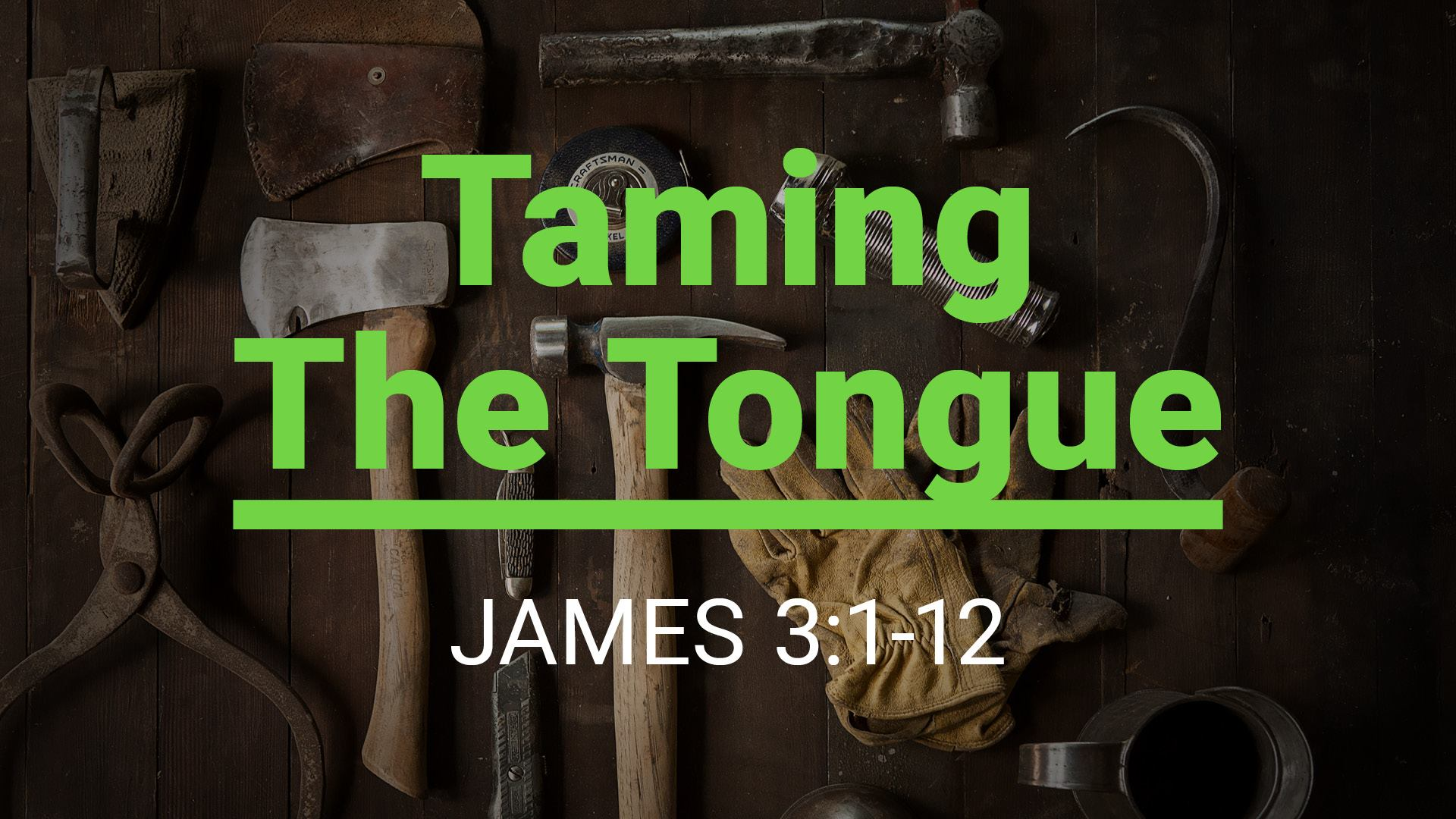 Sermon Taming The Tongue James 3 1 12