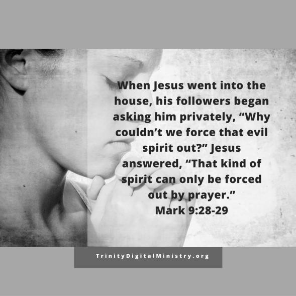 Mark 9:28-29 image