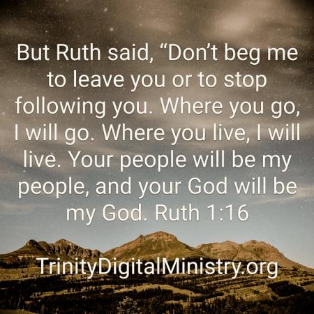 Ruth 1-16 image
