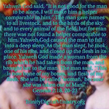 Genesis 3-Adam and Eve image