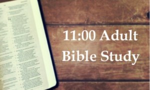 11:00 Adult Bible Study Recommences in September