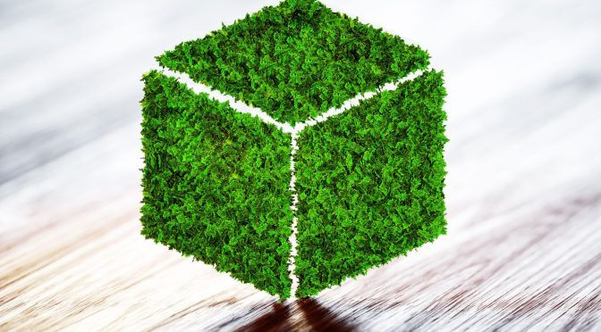 The Shift Toward Sustainability:  Why Biodegradable Materials Matter