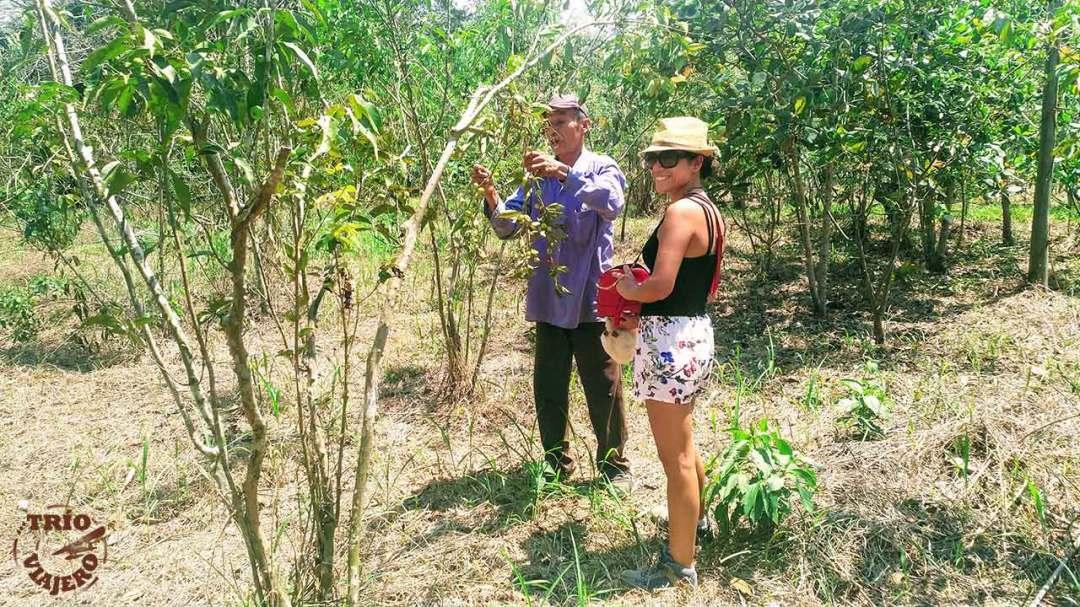 Bio-Kuka (Pucallpa - Perú - América) ⋆ Trío Viajero