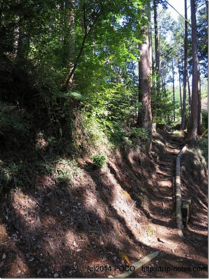 高山不動尊裏の山道