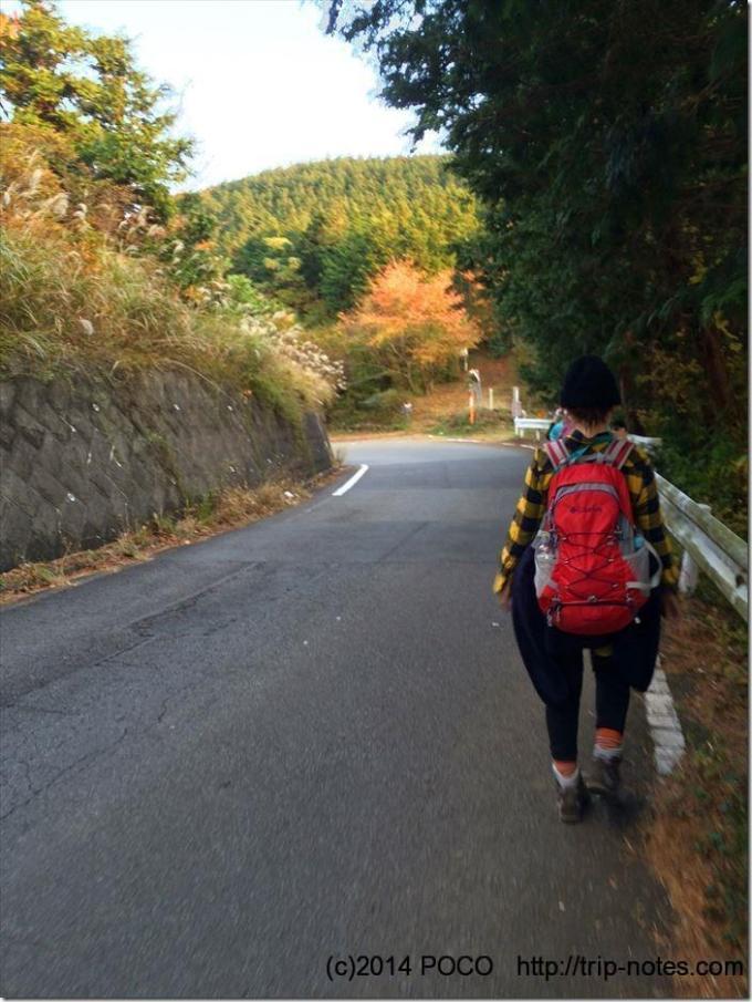 箱根外輪山縦走車道