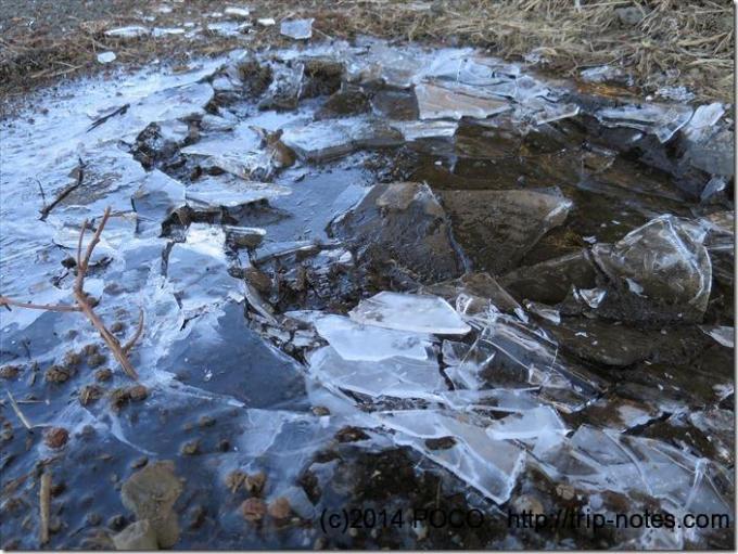 大野山ハイキングコース水たまり