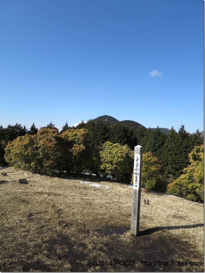 シダンゴ山山頂