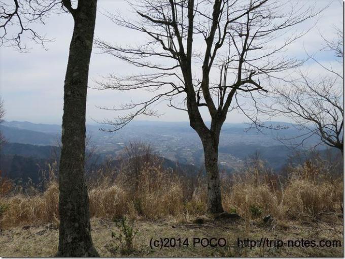 櫟山からの展望
