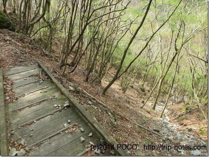 天城縦走路の橋