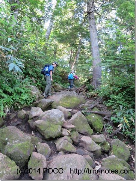 燧ケ岳への山道