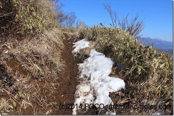 竜ヶ岳登山道