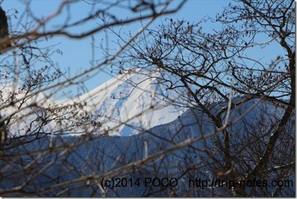 寂しょう尾根からの富士山